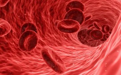 Red Blood Cells Offer a Breakthrough in Liquid Biopsy Technology